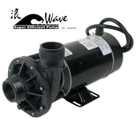 """Wave 2-speed Pump 1hp 2"""" (A.O. Smith Motor HS/LS) w/Leaf Trap"""