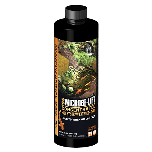 Microbe-Lift Concentrated Barley Straw Extract Plus Peat - 16 oz.